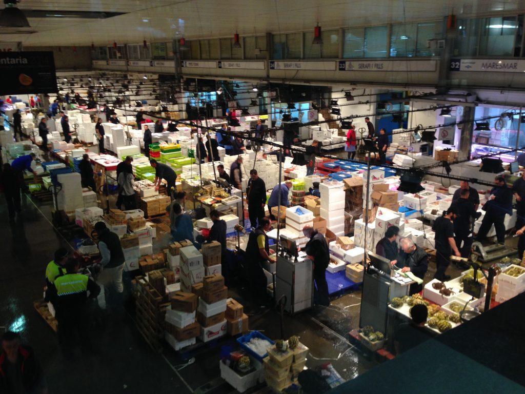 Mercado Central Pescado - Mercabarna